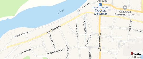 Речная улица на карте села Турочак с номерами домов