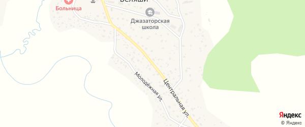 Центральная улица на карте села Беляши с номерами домов