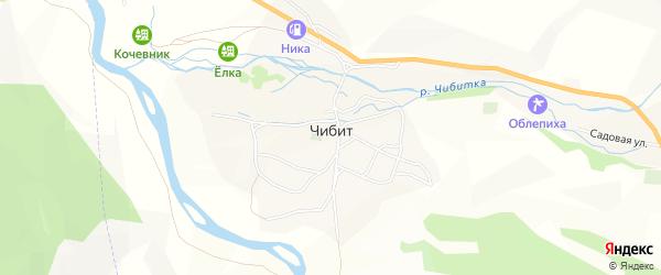 Карта села Чибита в Алтае с улицами и номерами домов