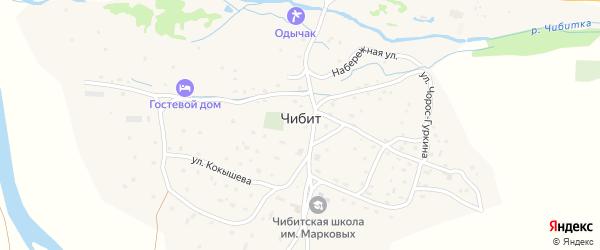 Центральная улица на карте села Чибита с номерами домов