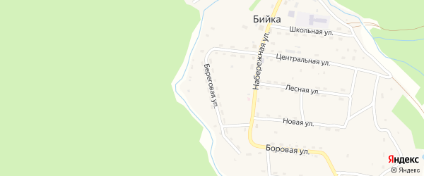 Береговая улица на карте села Бийки с номерами домов