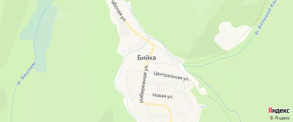 Карта села Бийки в Алтае с улицами и номерами домов