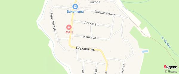 Новая улица на карте села Бийки с номерами домов