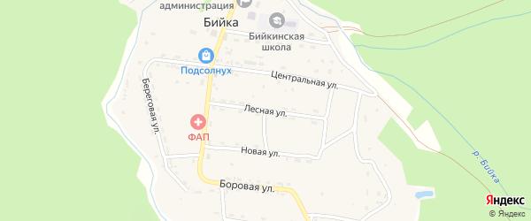Лесная улица на карте села Бийки с номерами домов