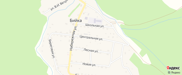 Центральная улица на карте села Бийки с номерами домов