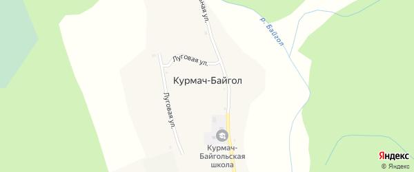 Луговая улица на карте села Курмача-Байгла с номерами домов