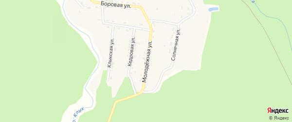 Молодежная улица на карте села Бийки с номерами домов