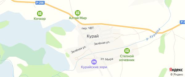 Карта села Курая в Алтае с улицами и номерами домов