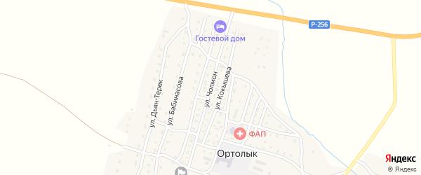 Улица Чолмон на карте села Ортолыка с номерами домов
