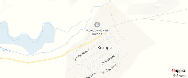Карта села Кокори в Алтае с улицами и номерами домов