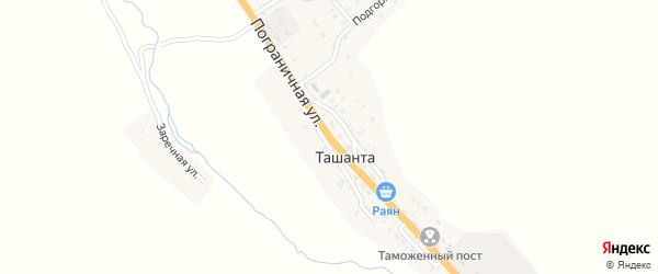 Пограничная улица на карте села Ташанты с номерами домов