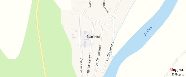 Лесная улица на карте села Саян с номерами домов