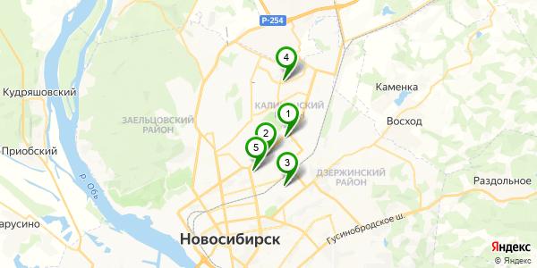 individualki-novosibirska-v-kalininskom-rayone