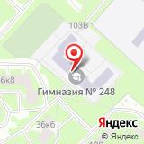 Гимназия №248, Кировский район