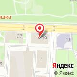 ПАО Возрождение Санкт-Петербурга