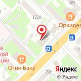 ООО Авто-Щит