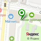 Местоположение компании Потопальский и партнеры