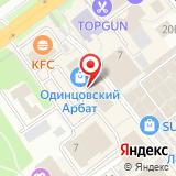 ООО Аудитор