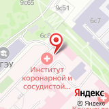 Институт коронарной и сосудистой хирургии им. А.Н. Бакулева РАМН
