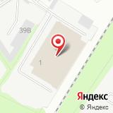 ООО Автошина Плюс