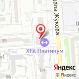 X-Fit Воронеж