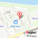 Максим-Сервис