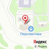 Нижегородская Интернет-Компания