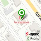 Местоположение компании Волжская оценка