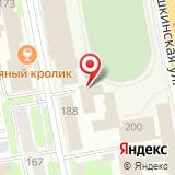 ООО Динамо