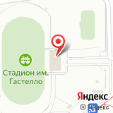 Федерация боевого хапкидо Республики Башкортостан