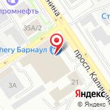 ООО Барнаул-Моторс