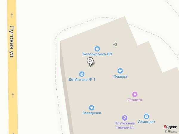DVizhenie на карте