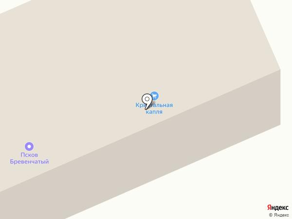 Псков Бревенчатый на карте