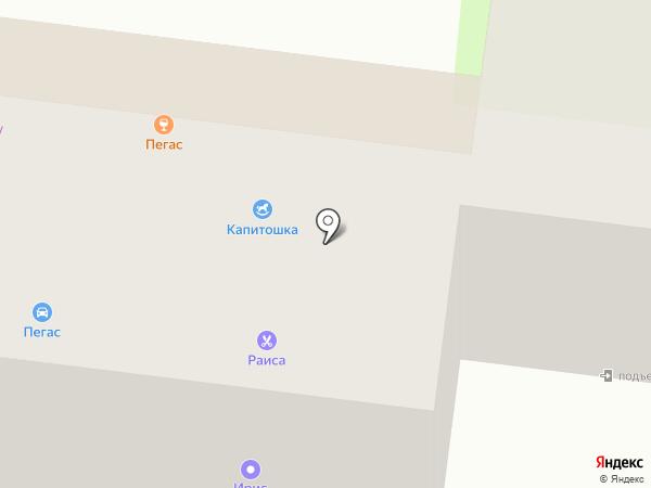 Раиса на карте