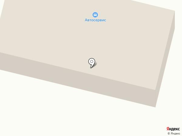 Шиномонтажная мастерская на Светлой на карте