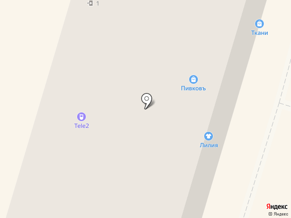 Лилия на карте Вихоревки