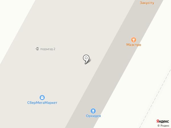 Маэстро на карте Братска