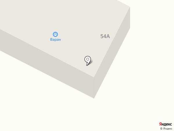 Варан на карте Братска