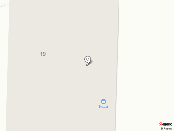 Кедр на карте Братска