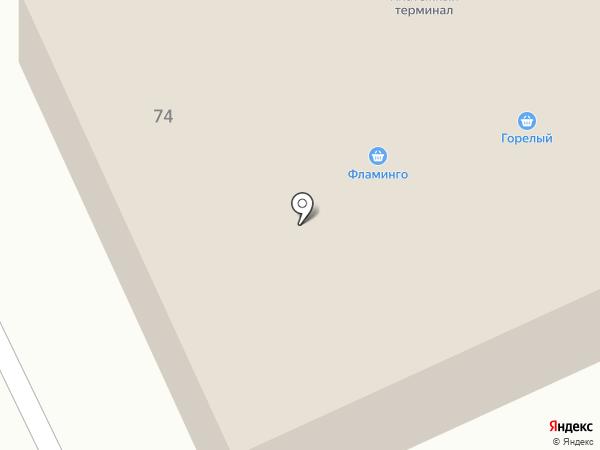 Фламинго на карте Братска