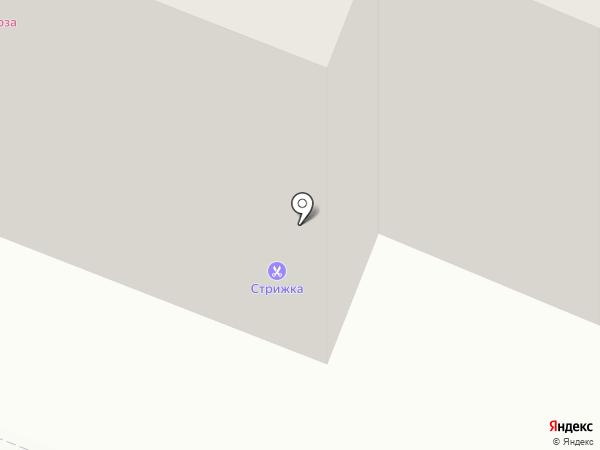 Стрекоза на карте Ангарска
