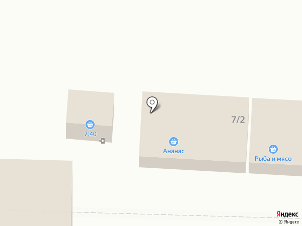 Ананас на карте Шелехова