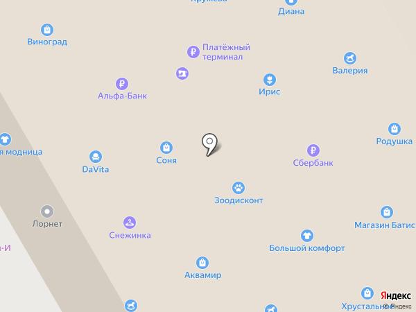 Соня на карте Шелехова