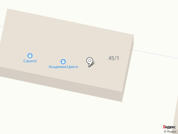 Элит на карте Новой Разводной