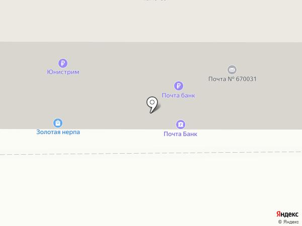 Золотая нерпа на карте Улан-Удэ