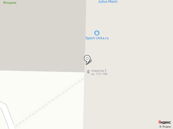 Семейный Стриж на карте Читы