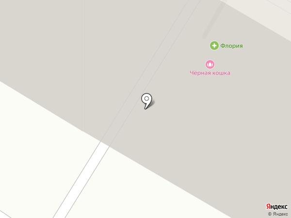 Аврора на карте Читы