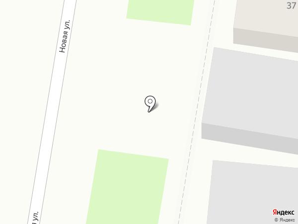 Цедр на карте Благовещенска