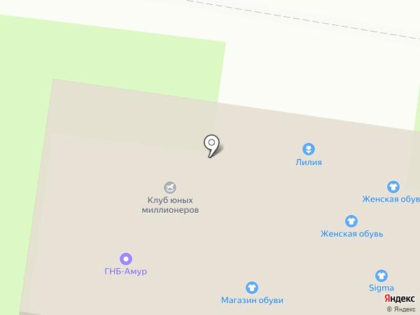 Ларец чудес на карте Благовещенска