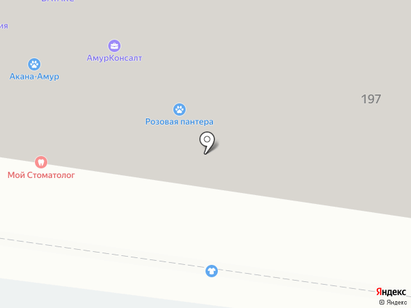 Комиссионка на карте Благовещенска